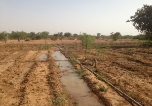 Tele-Irrigation-02-300x225